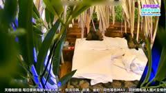 精品小旅馆绿叶房偷拍中年男女开房女的貌似很饥渴搞完没多久又骑上来